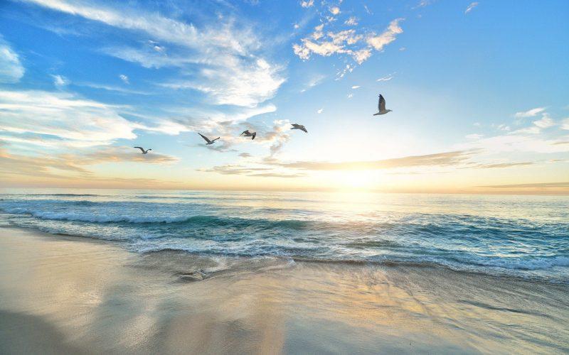 Które morze jest największe?