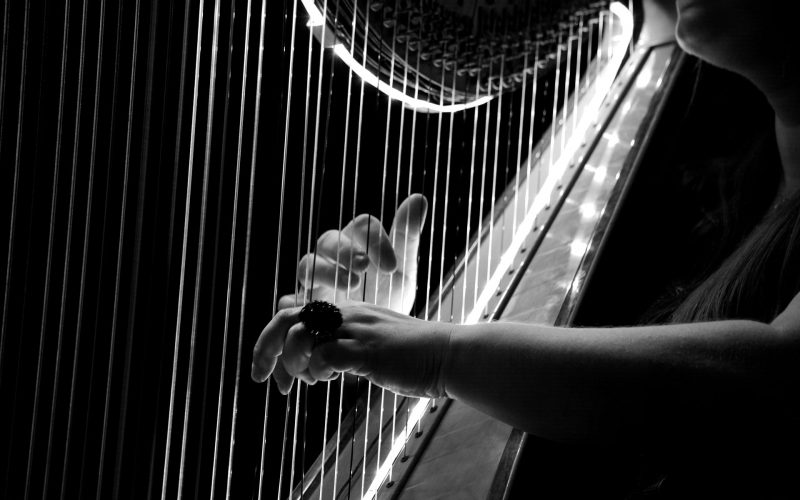 Symbolem Irlandii jest harfa.