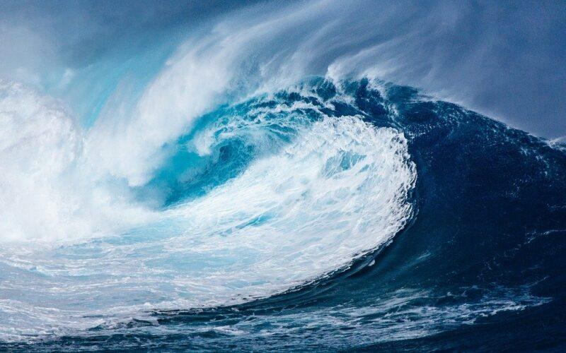 Jak wiele procent powierzchni Ziemi zajmują oceany?